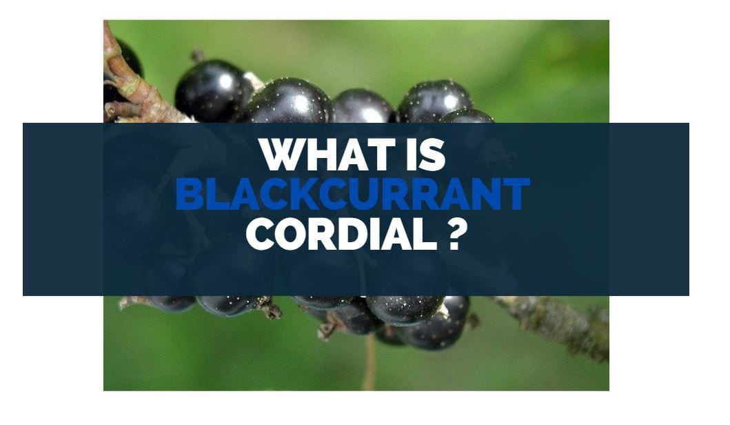 what is blackcurrant cordial
