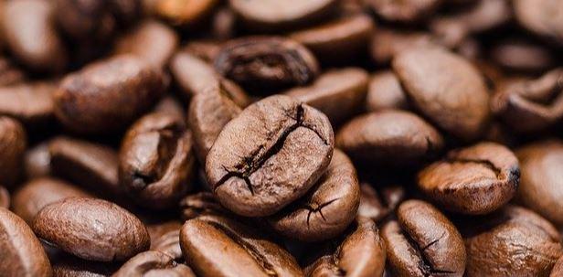 Is there Caffeine in Shloer