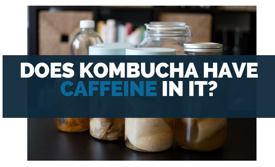 does kombucha have caffeine in it