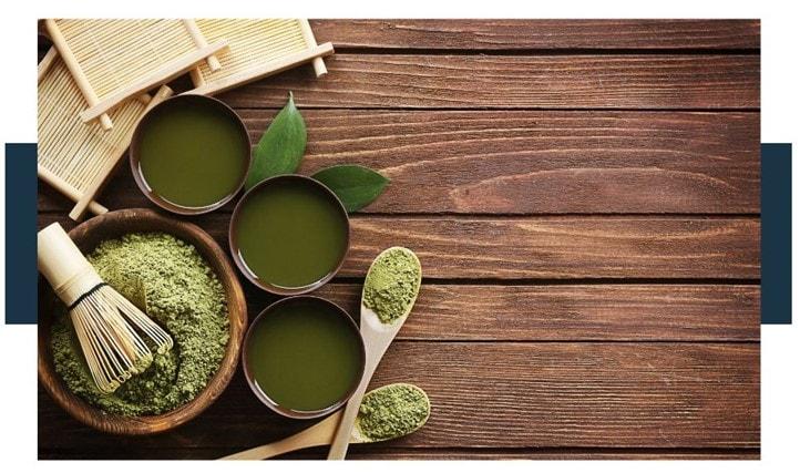 green tea for kombucha