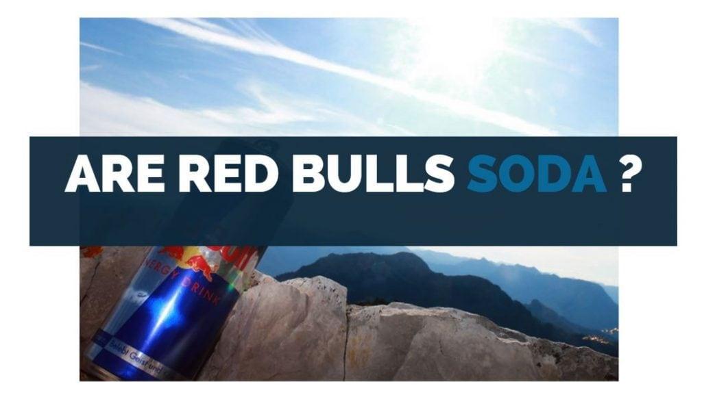 are red bulls soda