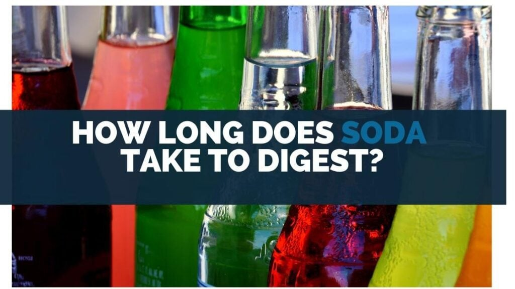 How Long Does Soda Take To Digest