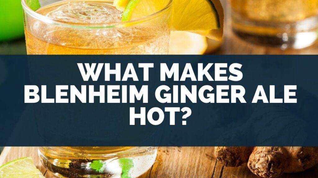 What Makes Blenheim Ginger Ale Hot