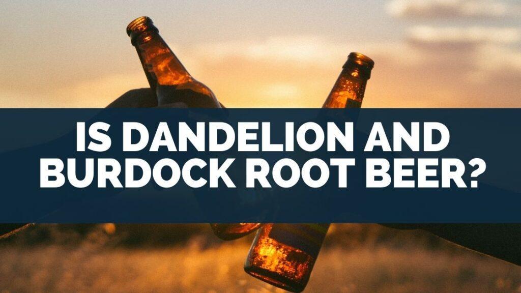 Is Dandelion And Burdock Root Beer