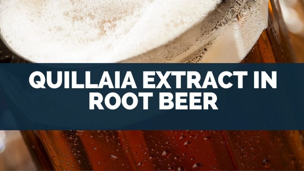 Quillaia Extract In Root Beer