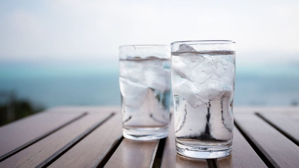 Which Tonic Water Has the Most Quinine