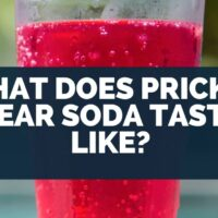 What Does Prickly Pear Soda Taste Like